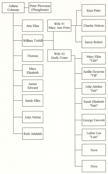 The Plowman Family Tree