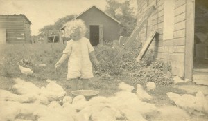 Betty feeds the chickens.